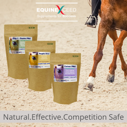 Popular products from Equine Exceed