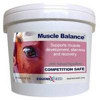 Muscle support from Equine Exceed