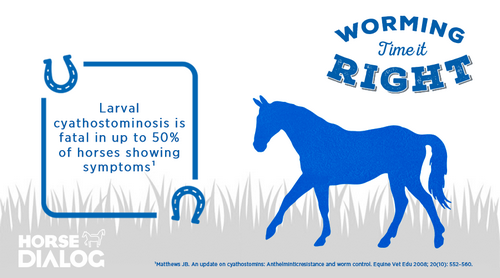 learn about worms in horses
