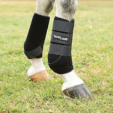 Thinline Cobra protective front boots for horses