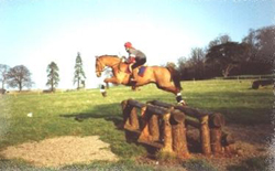 horse being ridden over a cross country jump