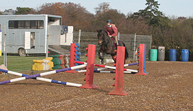 horse jumping a small grid